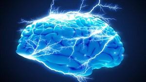 Beyin hücresi ne kadar yaşar? Tahminlerinizi yanıltacak!