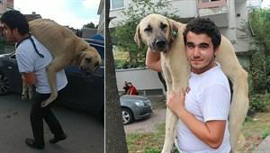 Hasta köpeği tedavi ettirmek için sırtında taşıyan genç konuştu